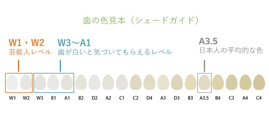 歯の色見本